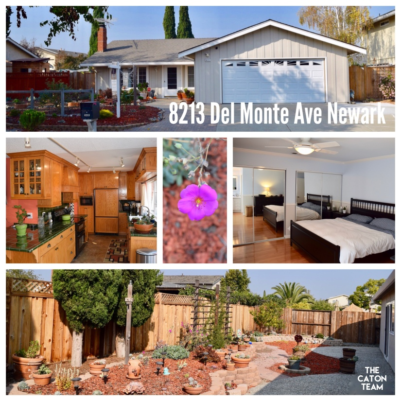 8213 Del Monte Ave, Newark – FOR SALE